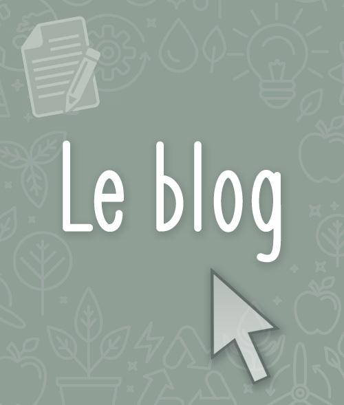 bouton_blog